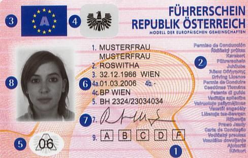 Führerschein Foto zur Verfügung gestellt - KFZ Zulassung