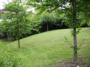 Wohnung mit Garten